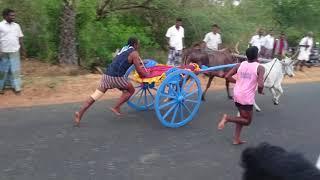 Ettiyathali maatu panthayam 2772018