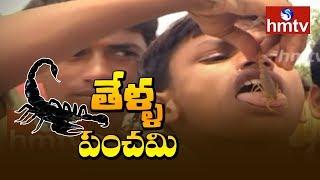 కర్ణాటక సరిహద్దులోని కందుకూరు గ్రామంలో వింత ఆచారం | Scorpions Festival At Kandukur | Karnataka |hmtv
