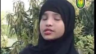 bangla  nath  Sonar Modina  K alom