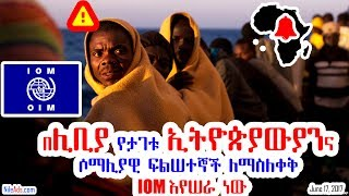 በሊቢያ የታገቱ ኢትዮጵያውያንና ሶማሊያዊ ፍልሠተኞች ለማስለቀቅ IOM እየሠራ ነው - Ethiopians and Somalians in LIBYA - VOA