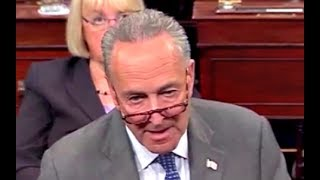 Chuck Schumer Responds to Mitch McConnell after the