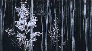 Ansel Adams A Documentary Film HDTV 720p Legendado PT BR