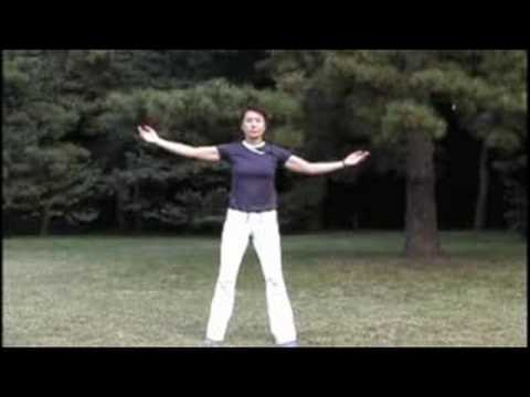 Qigong 14movements