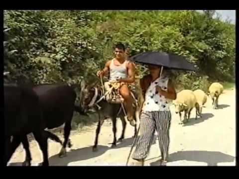 Shqipëri: Dhuna në familje