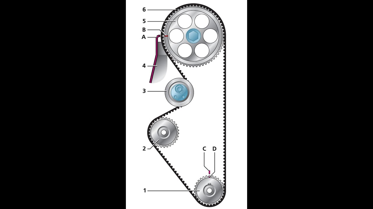 Как сделать ремень грм на ваз
