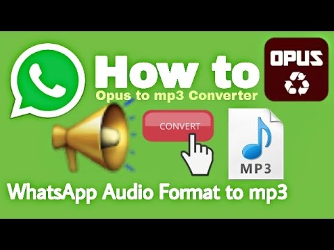 How to Convert WhatsApp Audio Format to mp3 | Opus to mp3 Converter