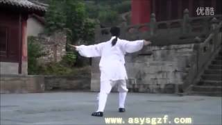 WUDANG Daoist Five ( 5 ) Elements QIGONG by Li YuanFei ........Part 2  ( Wood  ).
