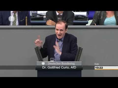 """Gottfried Curio(AfD): """"Merkel gehört nicht zu Deutschland."""""""