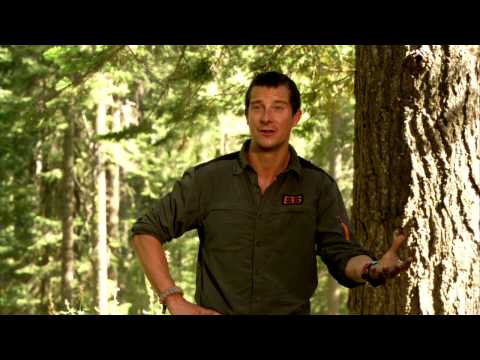 Running Wild With Bear Grylls: Bear Grylls Behind the Scenes TV Interview