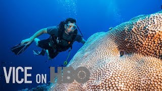 Scientists Are Breeding Super Coral That Can Survive Climate Change | VICE on HBO