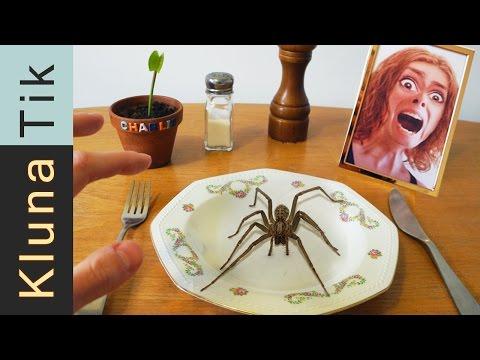 Eating a SPIDER!! Kluna Tik Dinner #43 thumbnail