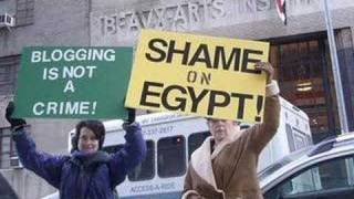 Scared Monkeys Video Egyptian Blogger Jailed