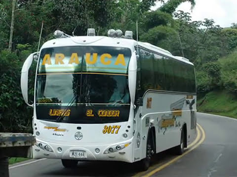 Buses Colombianos