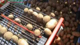AKPIL Kartofel potatoe harvester first setting - prvo podešavanje