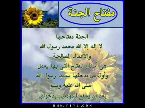 The Holy Quran-beautiful And Heart Trembling Quran Recitation By Maher Al-muaiqly video