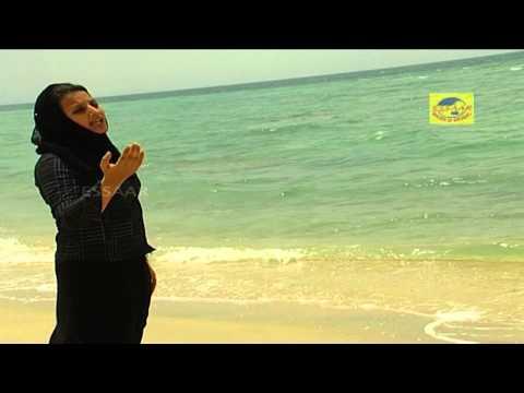 Akale Akale Palli Minnaram | Malayalam Mappila Album | Musaf