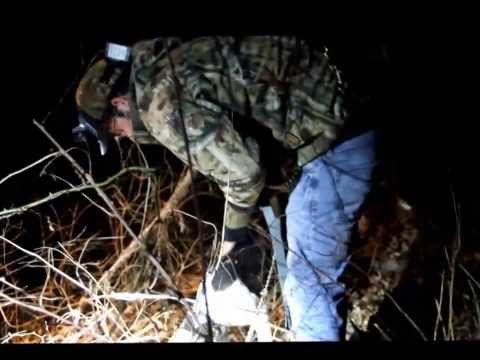 Coon Hunting - Tennessee 2014 - Treeing Walker Coonhounds