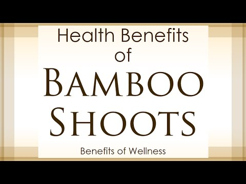 Health Benefits of Bamboo Shoots - Amazing and Super Vegetables - Benefits of Wellness