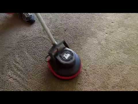 Oreck Orbiter, One Of The Best Home Carpet Cleaners!