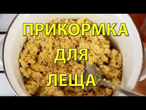 Прикорм для леща рецепты
