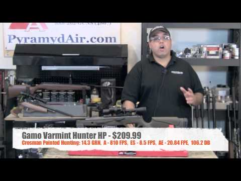 Gamo Varmint Hunter HP .22 Cal - Product Review