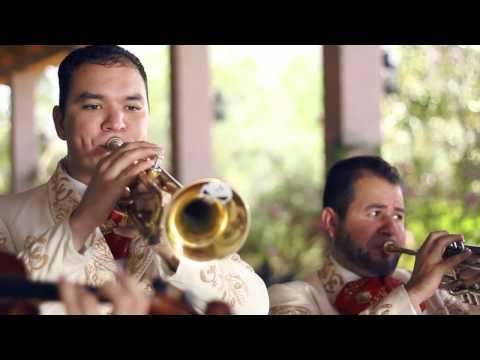 Descansa Mi Amor (Video Oficial) El Komander