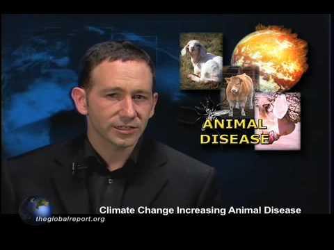 Climate Change Increasing Animal Disease