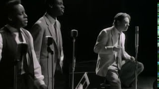 Robert Palmer - She Makes My Day