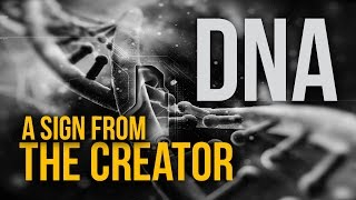 DNA Intelligent Design