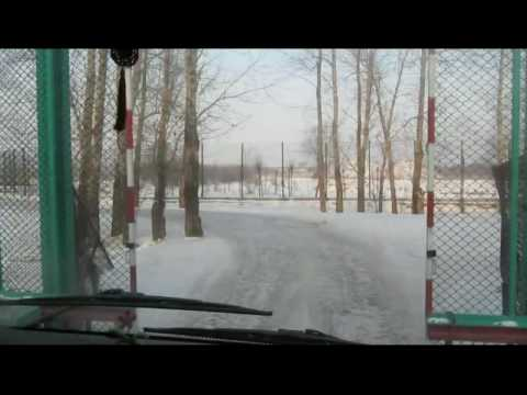 Harbin, China - Siberian Tiger Park - Part 1.avi