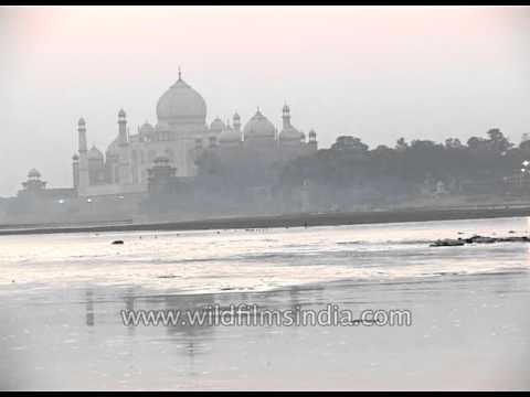 Yamuna pollution threatens Taj Mahal - Agra