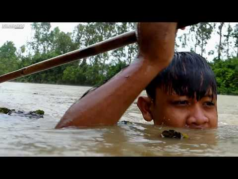 Primitive Technology: Fishing Using Spearfishing Catch Big Fish - Cooking Fish & Eating Delicious thumbnail
