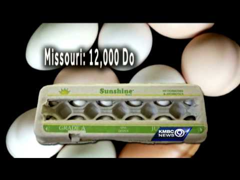 Missouri lawmakers scramble the definition of eggs