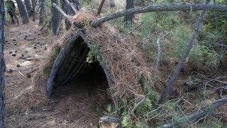 Refugio en el Bosque// Shelter in the Woods