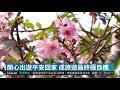 觀光旅遊安全宣導週 5大目標盼平安歸 | 華視新聞 20190320