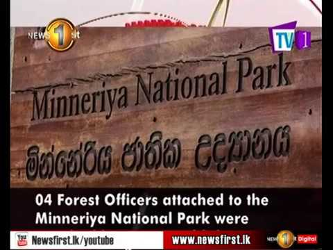 minneriya national p|eng