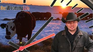 A Day in the Life - Wyoming Rancher & Youtuber