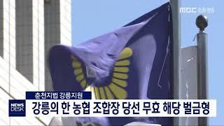 강릉의 한 농협 조합장 당선 무효 해당 벌금형