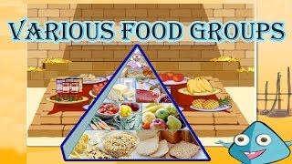 Food Pyramid, The 5 Different Food Groups, Learn the Healthy & Unhealthy Foods, Video for Kids