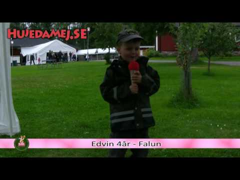 Hujedamej 2009 - Edvin -  Falun