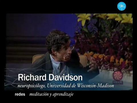 Redes-50--Meditacion-y-aprendizaje.flv