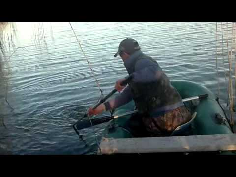 карп с лодки видео