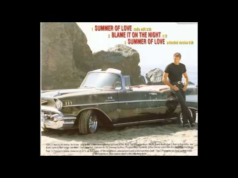 David Hasselhoff - Blame It On The Night