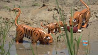 Safari Wild Animals Toys For Kids - Let's Learn Animal Names!