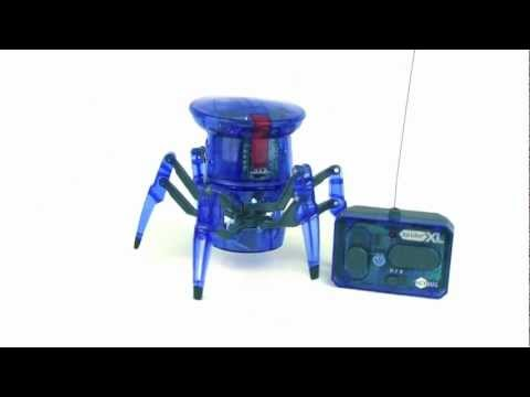HEXBUG Spider XL.mov