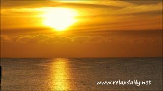 study music -- relaxing background music -- relaxdaily N°027
