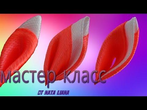 Двухцветные лепестки