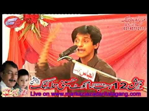 zakir Ali Abbas askari Jashan 12 Rajab 2018 Talagang