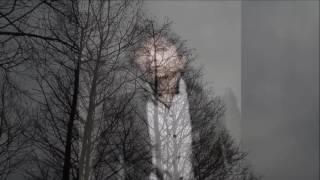 落葉樹  オリジナル歌手 ♪  まつざき幸介    カバ-アメキリ   歌詞付き