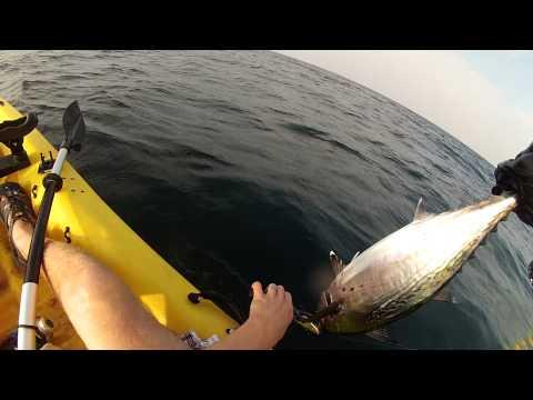 ловля тунца видео на русском